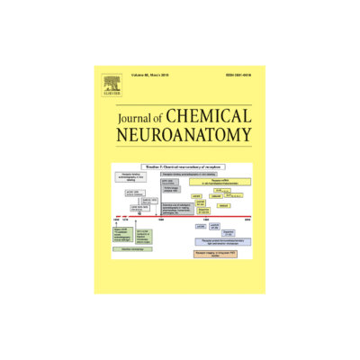Journal of Neuro